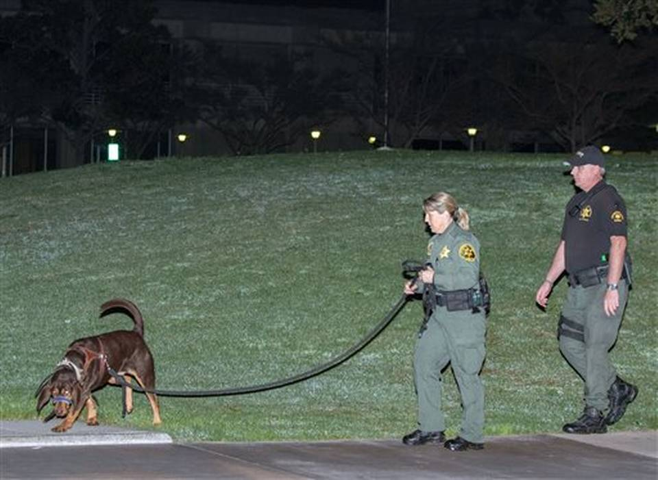 Search begins - dogs participate