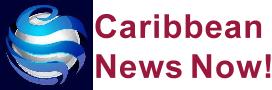 caribbeannewsnow logo