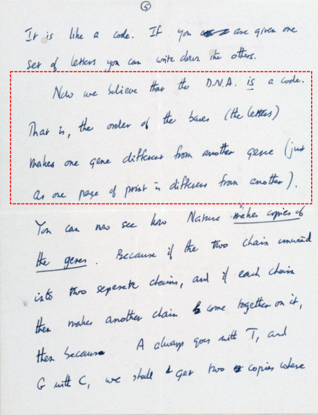 Figure 2: Crick's March 19, 1953 letter, p. 5 with a highlight (Fair use)