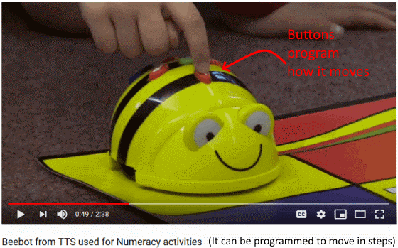 The BeeBot is a US80 turtle robot digital device for early primary education that can be programmed using arrow, start and clear keys