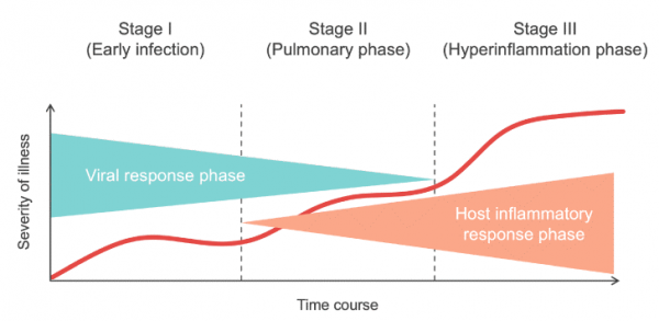 A-summary-of-stages-of-the-Covid-19-disease